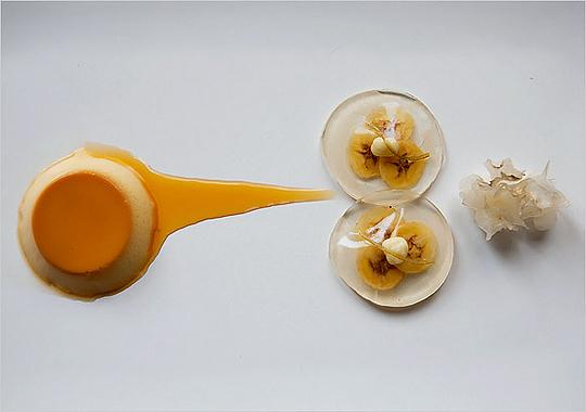 pripriocamilkpudding