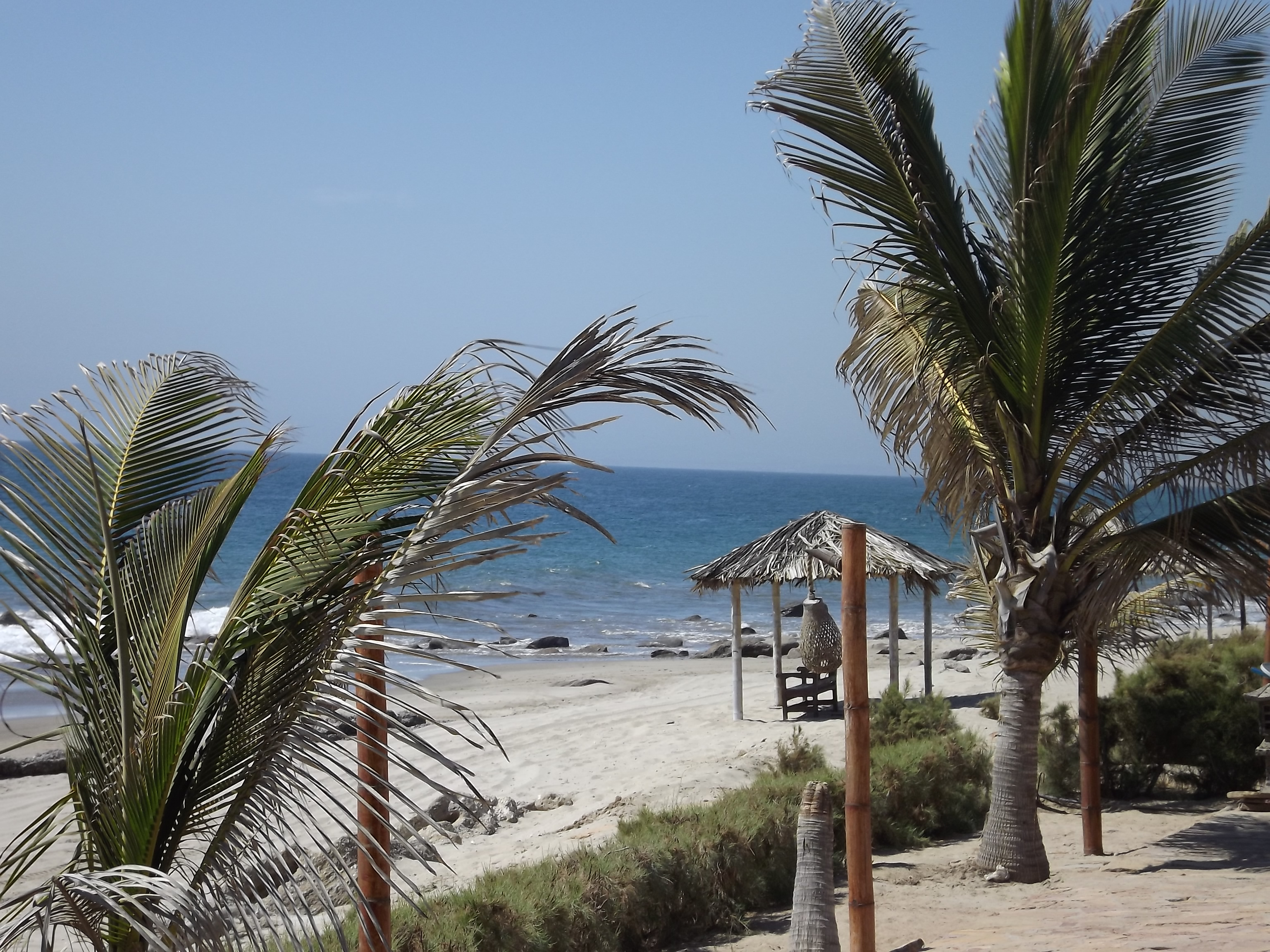 A Trip To Cancas Tumbes Peru New World Review