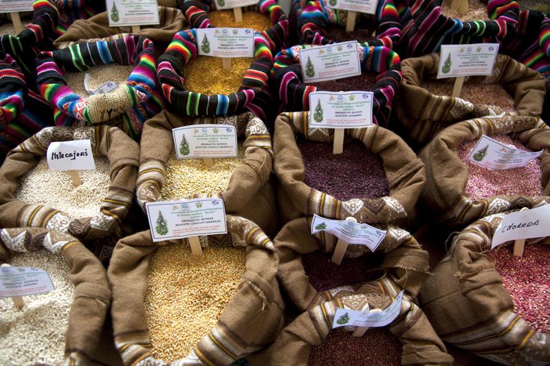 quinoa, mistura