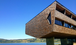 refugia_chiloe