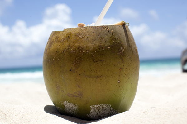 tulum_coconut
