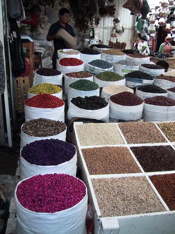 san cris painted beans